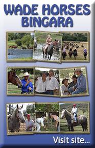 Wade Horses Bingara