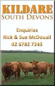 Kildare South Devons