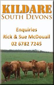Kildare South Devons