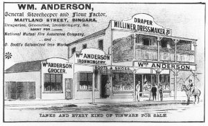 Anderson's Store - Bingara Telegraph Supplement