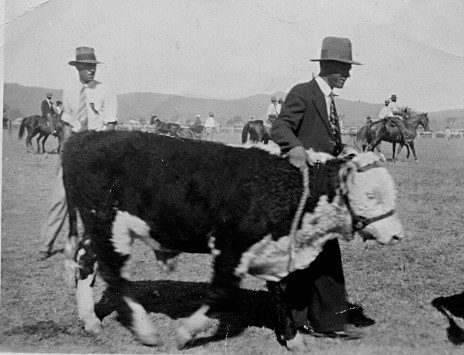 Frank King showing Glen Brown, First Bingara Show