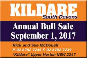 Kildare South Devon Bull Sale