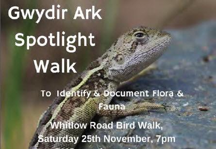 Gwydir Ark Spotlight Walk
