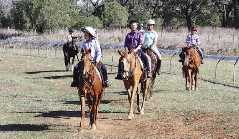 Bingara E Troop returning from a flat riding exercise.