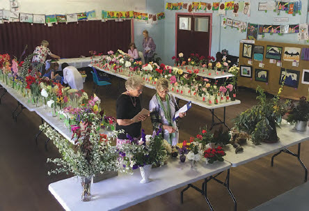 Colourful Display Of Flowers And Art At Spring Flower Show Bingara