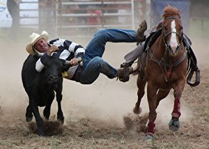 Stuart Dixon, Upper Horton Rodeo
