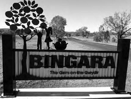 The Annual Bingara Orange Picking